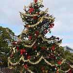 サンタさんは今どこにいる?サンタさんを追跡できるサイト